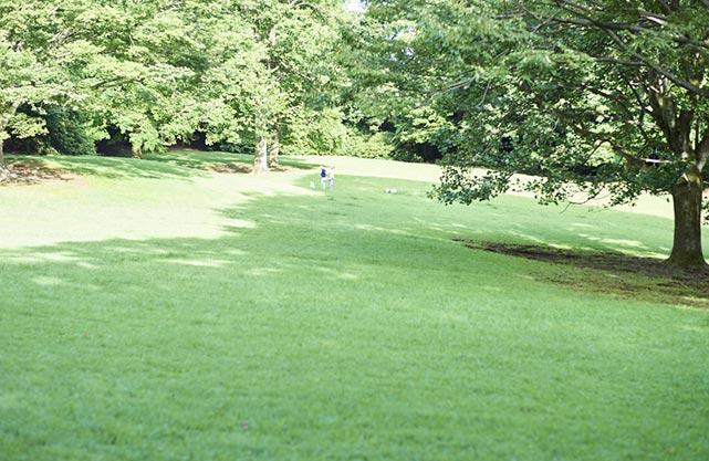 泊まれる公園 INN THE PARK