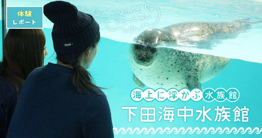 1日のショーの回数は20回以上!本物の自然の中にのびのび暮らす生き物の姿にほっこり♡「下田海中水族館」