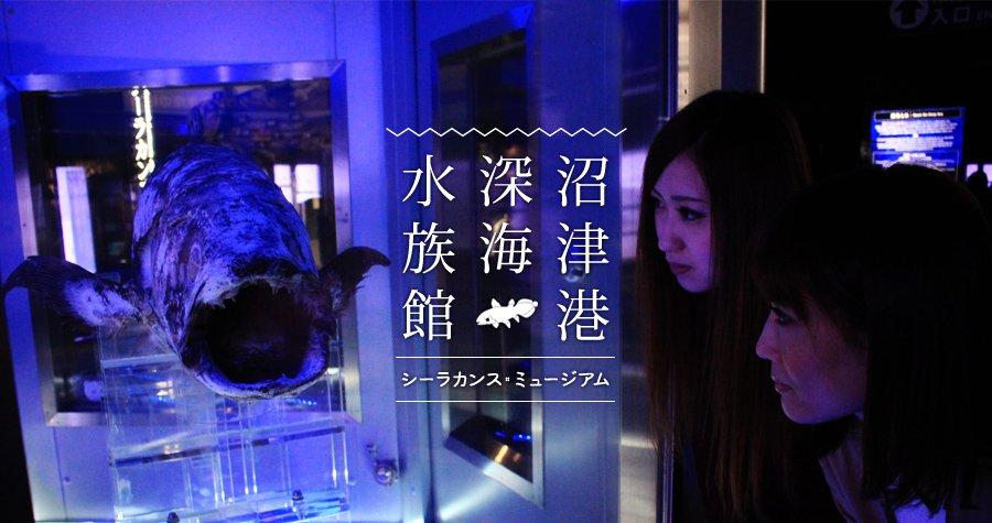 日本初☆深海に特化した水族館。見たこともない生物の姿に身も心も震えちゃう!「沼津港深海水族館 シーラカンス・ミュージアム」