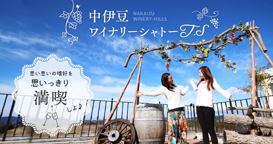 ここは日本?日本離れした絶景の中、思い思いの嗜好を贅沢に満喫できる「中伊豆ワイナリーシャトーT.S」
