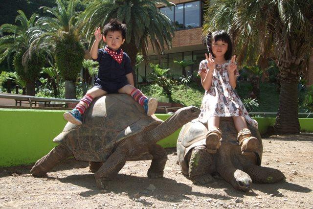 体感型動物園 iZoo&体感型カエル館KawaZoo