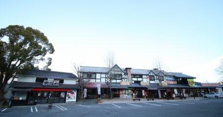 伊豆中央道・修善寺道路共通の普通乗用車用無料通行券プレゼント!